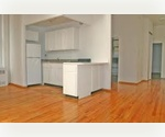 FINANCIAL DISTRICT TRUE 2BR....MINUTES TO SEAPORT.....GREAT SHARE !! 