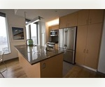 Luxurious Living in Downtown NYC with Sweeping Views - 2 Bedroom 2 Bath