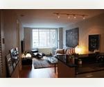 Luxury One Bedroom Apartment for Rent in Green Building in Midtown Manhattan - Leed Certified - Friendly to the Environment