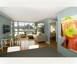 Long Island City One Bedroom One Bath with Private Balcony ~ River View ~ No Fee