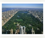 One Bedroom Manhattan Apartment for Rent - Absolutely Fabulous Opportunity - Central Park View